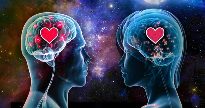 iubirea, dragoste, celule, creier, iubire, biologie, biologia