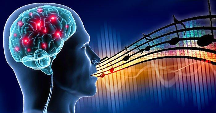 neuroștiință, neurostiinta, muzica, muzică