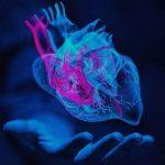 inima, gandim cu inima